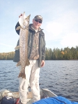 October Walleye and Pike